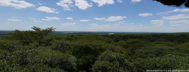 Ndumo from the lookout tower.